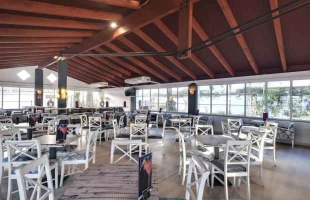 фото отеля Alcudia Garden изображение №21