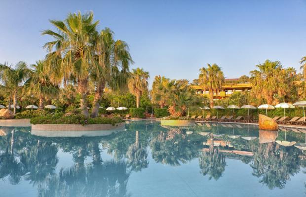 фотографии Acacia Resort изображение №4