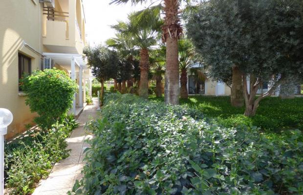 фото отеля Amore изображение №21