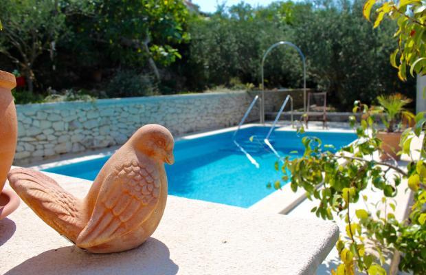 фото отеля Villa Lorena изображение №21