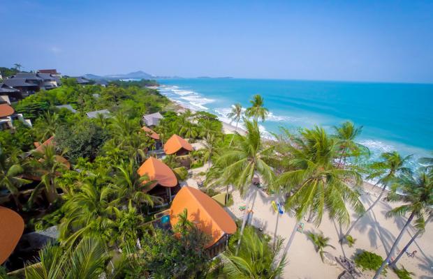 фотографии New Star Beach Resort изображение №64