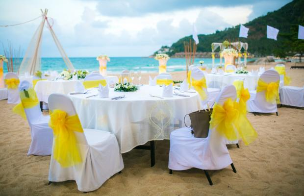 фотографии New Star Beach Resort изображение №12