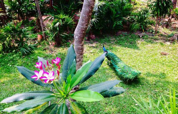 фотографии отеля Sugar Hut Resort изображение №43