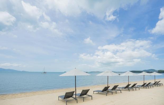 фотографии Peace Resort Bungalow изображение №32