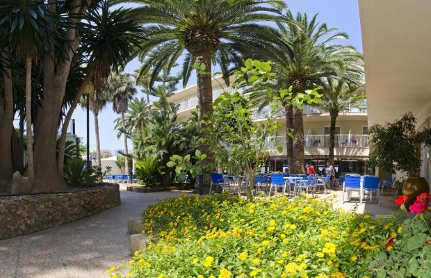 фотографии отеля Club Hotel Aguamarina изображение №11