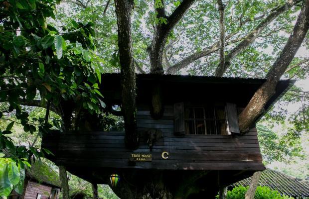фото отеля Doi Kham Resort and Spa Chiang Mai  изображение №17