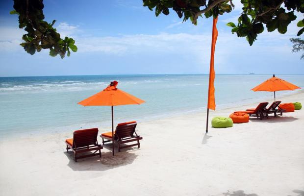 фотографии отеля Viva Vacation Resort изображение №7