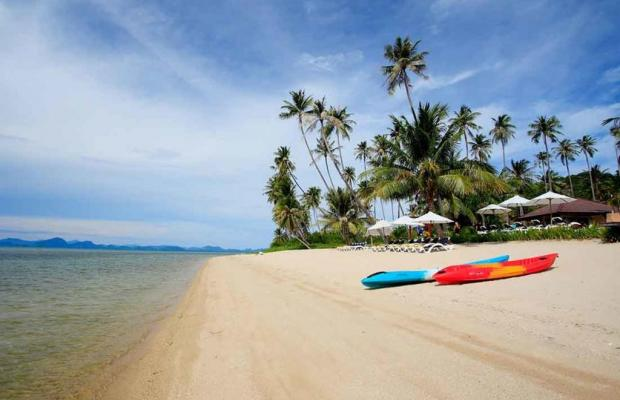 фотографии отеля Centra Coconut Beach Resort Samui (ех. Coconut Villa Resort & Spa) изображение №11