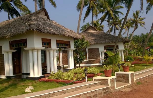 фотографии Palm Tree Bungalow изображение №12