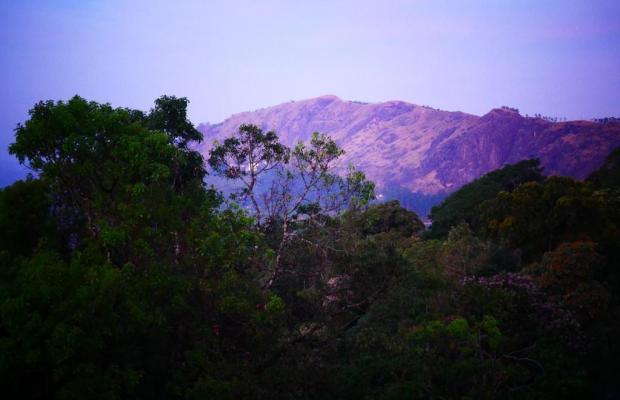 фото Deshadan Mountain Resort изображение №18