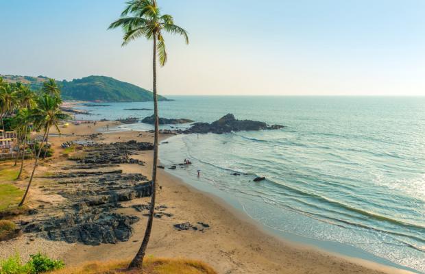 фото Camphor Goa изображение №14