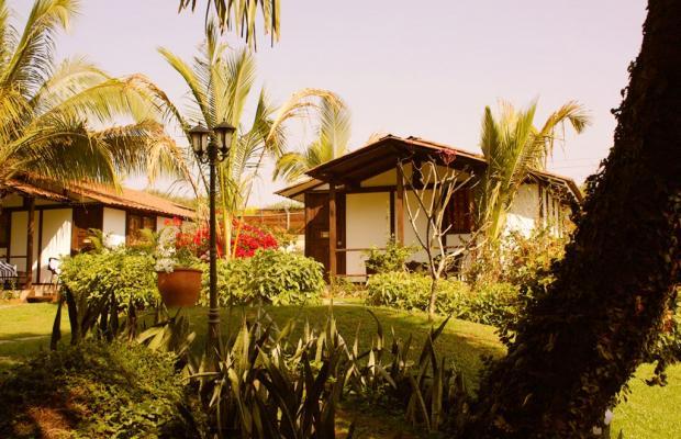 фотографии отеля Chalston Beach Resort  изображение №15
