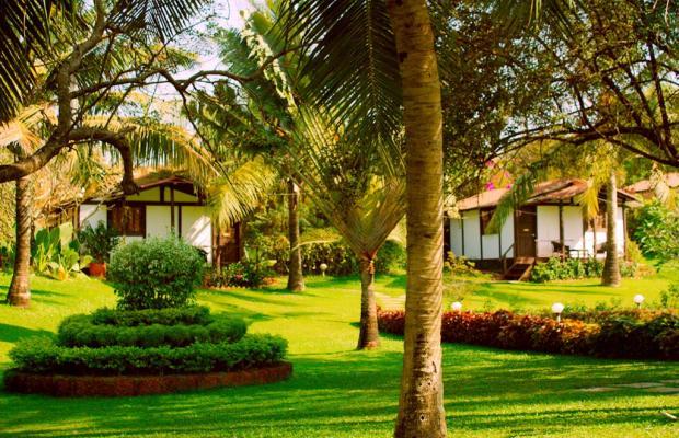 фотографии отеля Chalston Beach Resort  изображение №11