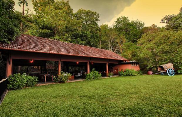 фото Rainforest Boutique Resort изображение №26