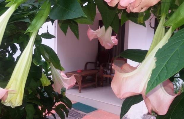 фотографии отеля Raja Park Beach Resort  изображение №11