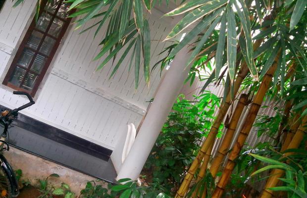 фото отеля Adams Wood House изображение №25