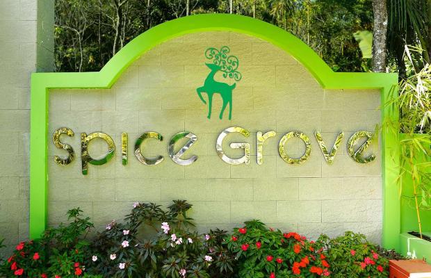 фотографии Spice Grove  изображение №28
