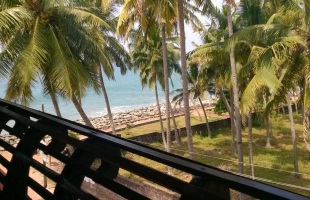 фотографии Palm Tree Annex изображение №32
