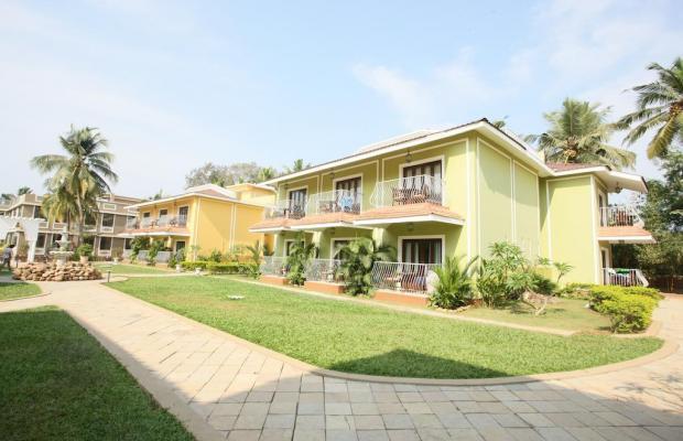 фото Acacia Palms Resort изображение №14