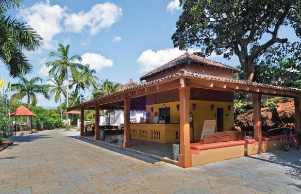 фотографии Devaaya Ayurveda & Nature Cure Centre изображение №24