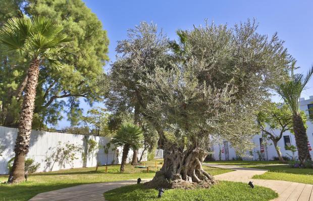 фото El Yam Resort (ex. Paradiso Lifestyle Resort) изображение №26