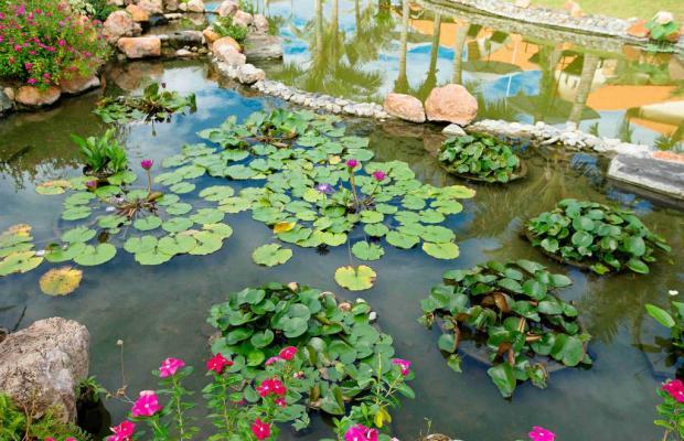фотографии отеля Blue Bay Mui Ne Resort & Spa изображение №35