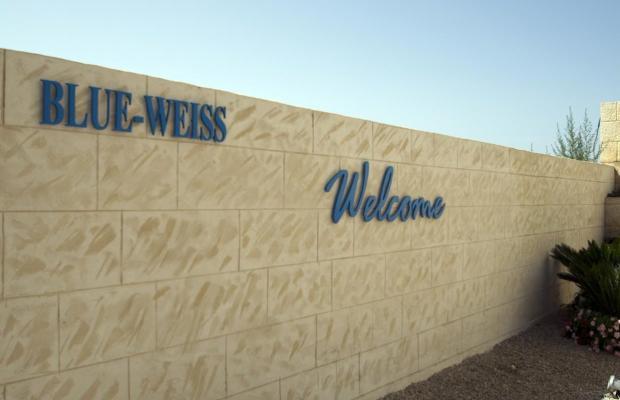 фото Blue Weiss изображение №66