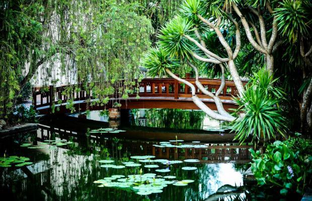 фотографии отеля Palm Garden Beach Resort & Spa изображение №31