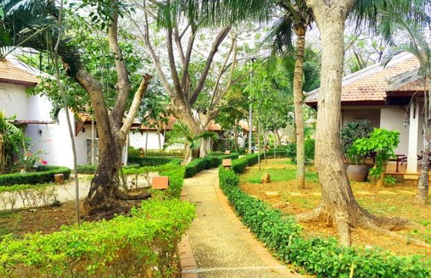 фотографии отеля Long Hai Beach Resort изображение №7
