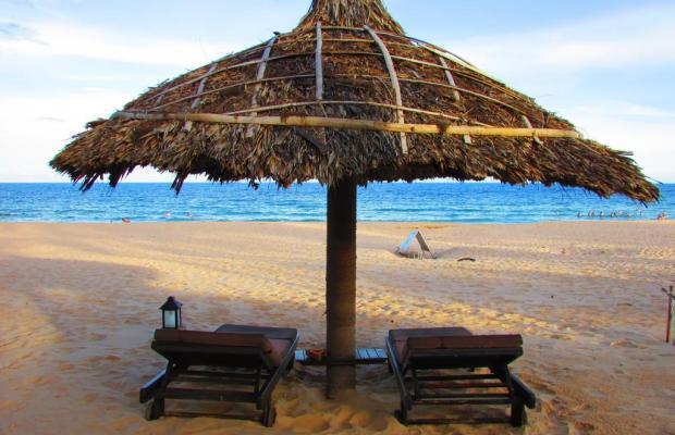 фотографии отеля The Beach Resort изображение №15