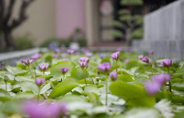 фотографии отеля Hoi An Historic изображение №31