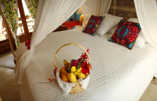 фотографии отеля Casa Las Tortugas изображение №15