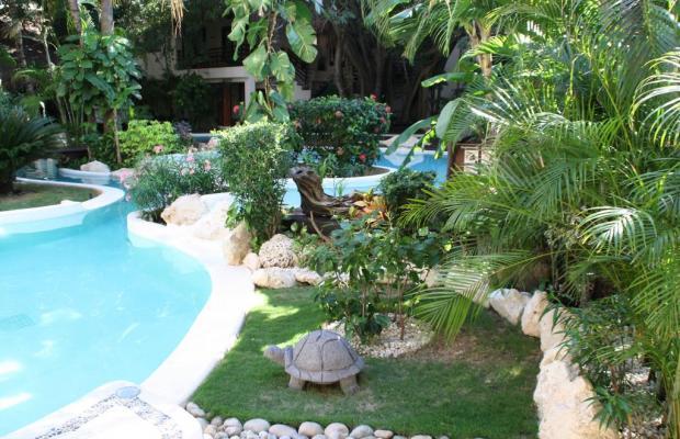 фотографии отеля La Tortuga Hotel & Spa изображение №27