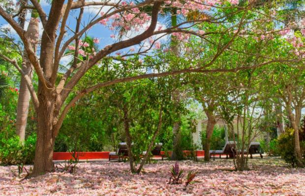 фотографии отеля Hacienda San Jose изображение №35