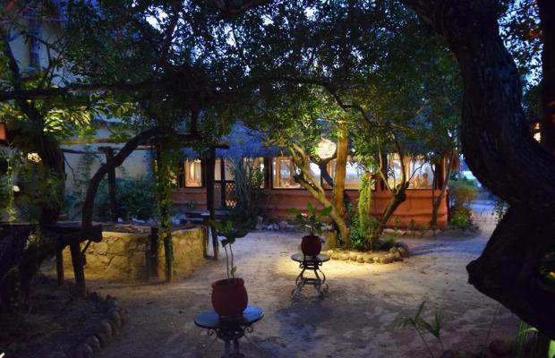 фотографии отеля Villas Delfines изображение №7