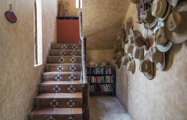 фотографии отеля Barrio Latino изображение №23