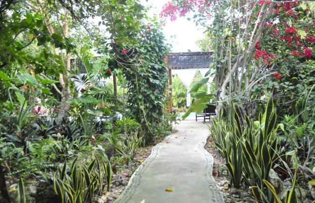 фото Green Tulum изображение №6