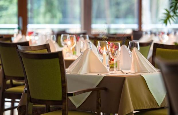 фотографии отеля Gradiali изображение №11