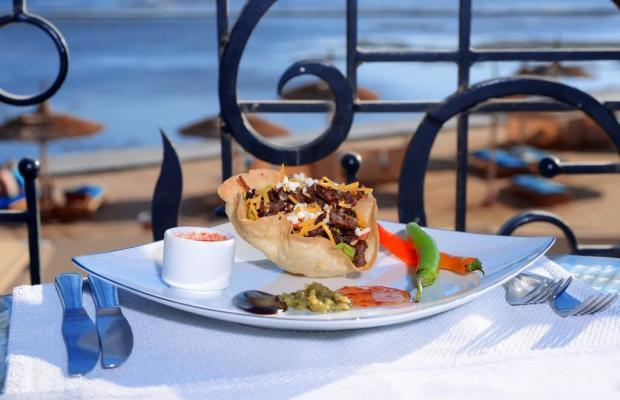 фотографии отеля Beach Albatros Resort изображение №19