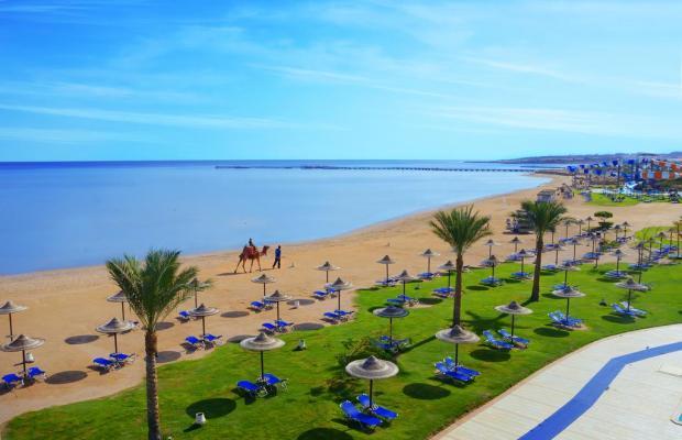 фотографии отеля Jaz Aquamarine Resort (ex.Iberotel Aquamarine Resort) изображение №19