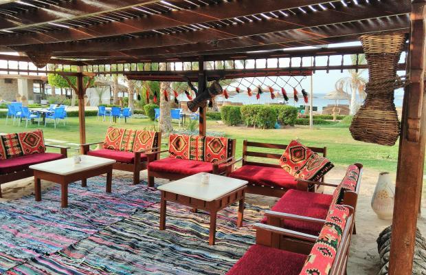 фотографии отеля Ganet Sinai Resort изображение №11