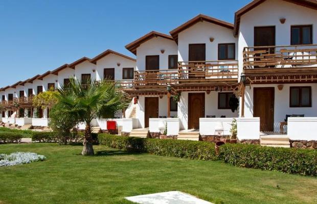 фотографии отеля Ganet Sinai Resort изображение №7