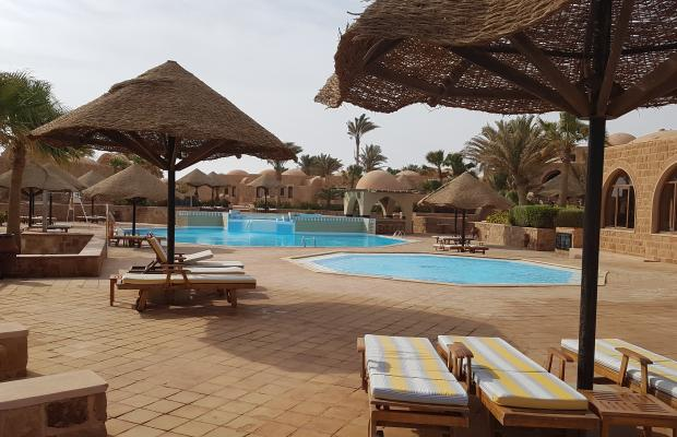 фотографии Movenpick Resort El Quseir изображение №68