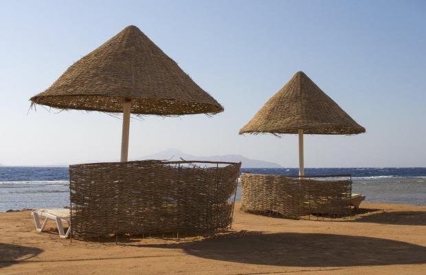 фото Park Inn by Radisson Sharm El Sheikh Resort (ex. Radisson Sas Golden Resort) изображение №42
