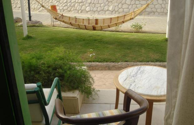 фотографии Hilton Hurghada Club (ex. Hilton Resort Villas) изображение №4
