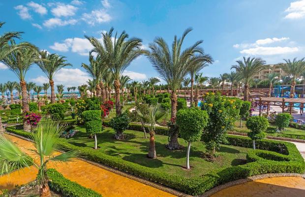 фотографии Festival Riviera Resorts Back изображение №4