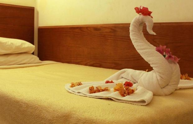 фотографии отеля Panda Resort изображение №11