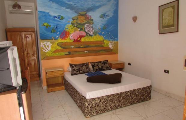 фотографии отеля Seaview Hotel Dahab изображение №19