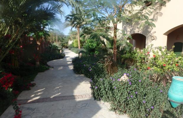 фото Shams Alam Resort изображение №34