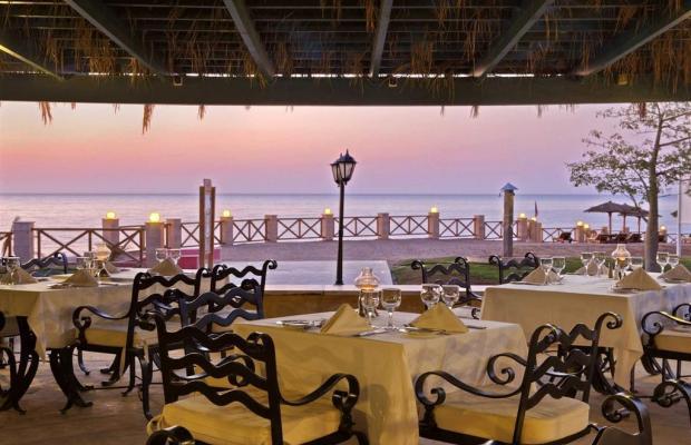 фотографии Hilton Sharm Waterfalls Resort изображение №12